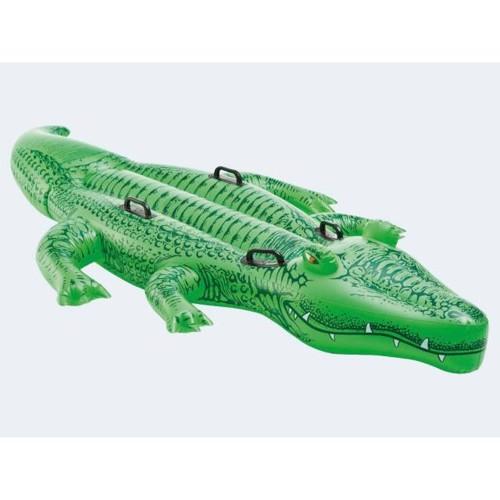 Image of   Badedyr krokodille 203cm