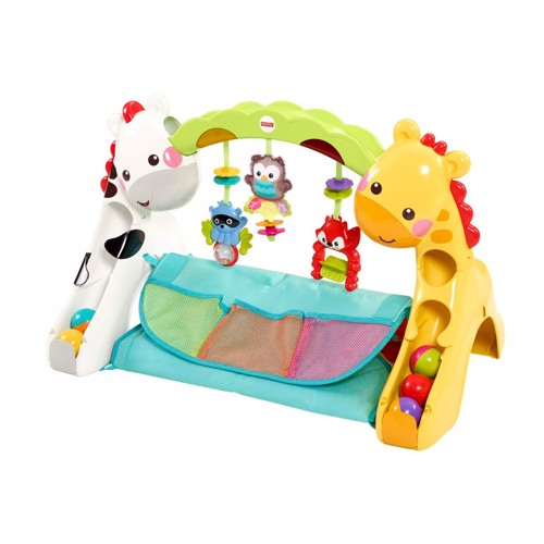 Image of   Fisher Price Gym