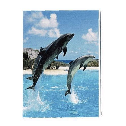 Image of notesbog med delfin (4002422085494)