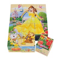 Eichhorn Disney Princess Block Puzzle