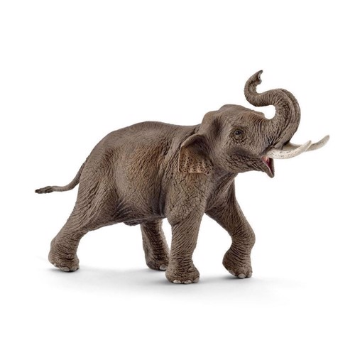 Image of   Schleich asiatisk han elefant