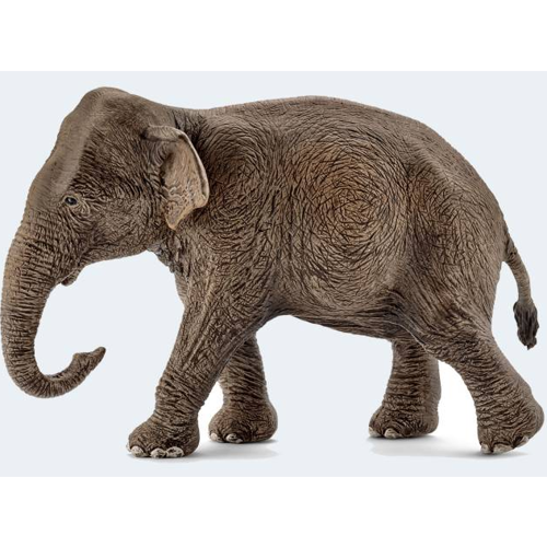 Image of   Schleich Asiatisk elefant hun