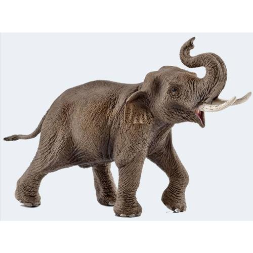 Image of   Schleich Asiatisk elefant han
