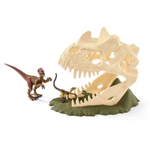 Image of Schleich skelet med Velociraptor (4055744013720)