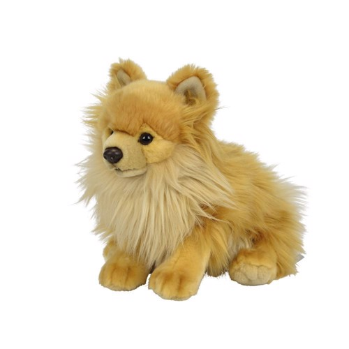 Image of Bamse hund Pomeranian (5413538300613)
