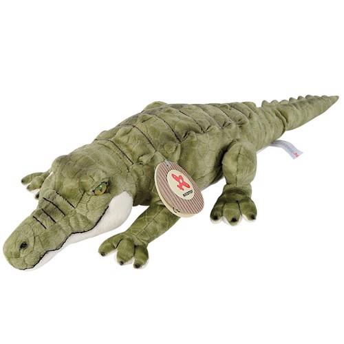 Image of   Alligator, bamse