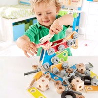 Hape Master Wood Building Set