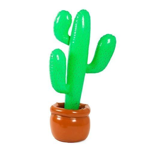 Image of   Oppustelig Kaktus i potte