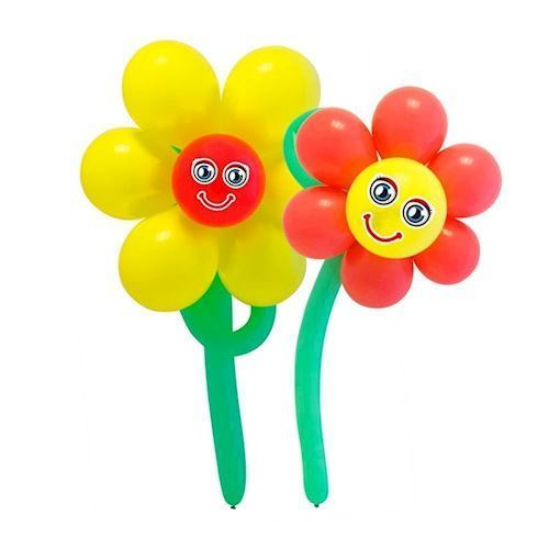 Image of   Balloon Set Flowers