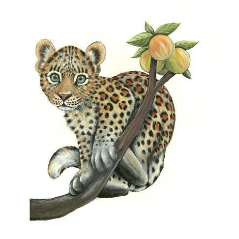 Image of   Wall sticker Baby Leopard on branch