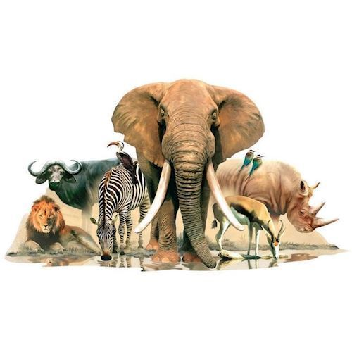 Image of   Wall sticker Animals of Africa