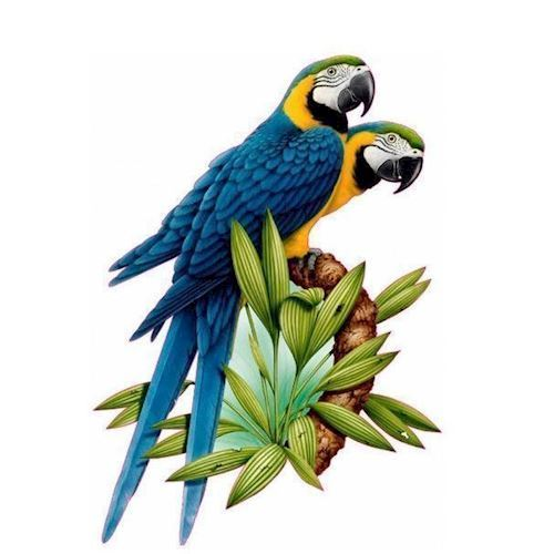 Image of   Wall sticker Parrots on branch