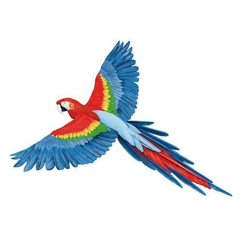 Image of   Wall sticker Parrot