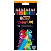 BIC Kids Color Up! farveblyanter 12 stk