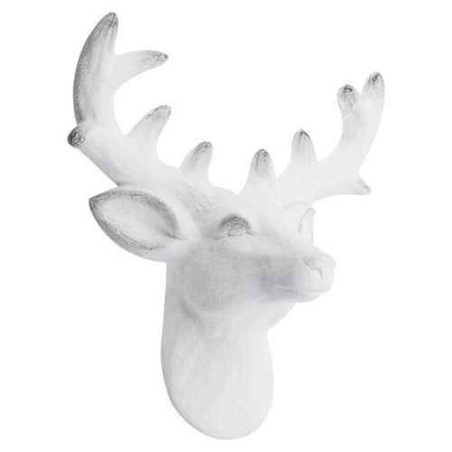 Image of   Rensdyr hoved, væg pynt