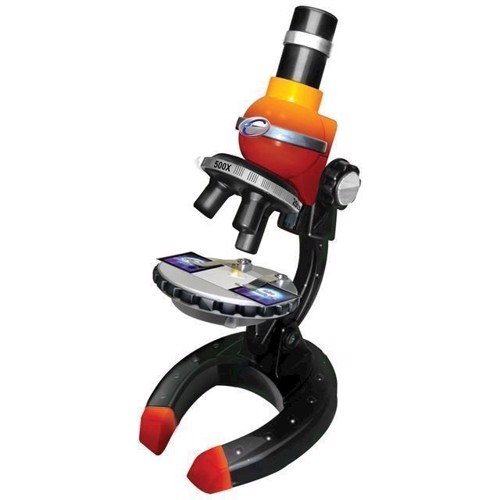 Image of Mikroskop 100/250/500x, Alga