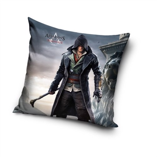 Image of Assassins Creed Pude