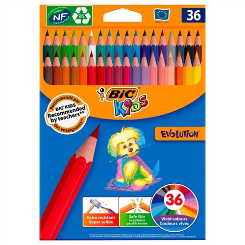 Image of BIC Kids Ecolution Evolution farveblyanter, 36 stk (3086123499140)