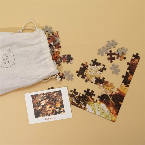 Image of Calm Club - Peace by Piece - 500 Piece Autumn Leaf Puzzle (5060146595254)