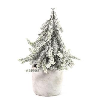 Image of Juletræ i potte, hvid 20 cm