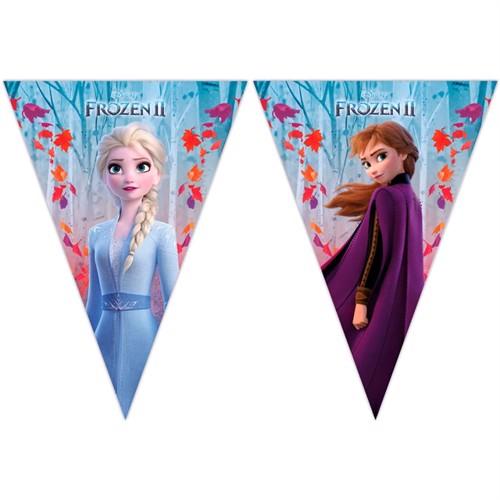 Image of Disney Frozen 2 Flagranke 2 M