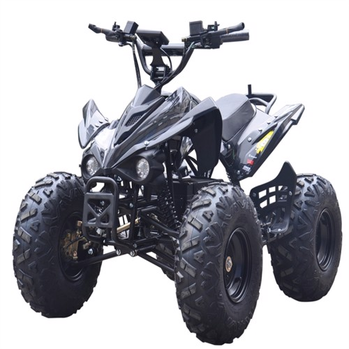 Image of El Atv Brushless Shaft 800W 48V 2019 Model