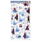 Glitter Disney Frozen 2 sticker sheet