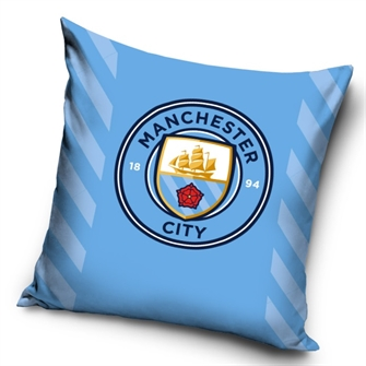 Image of Manchester City Pude