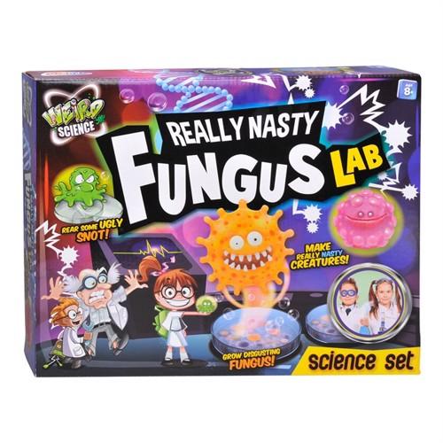 Image of Weird science ulækkert svampe laboratorie