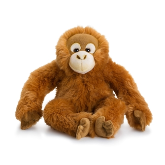 Image of WWF bamse orangotang 23 cm